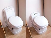 eventa-manual-or-electric-flush-toilet