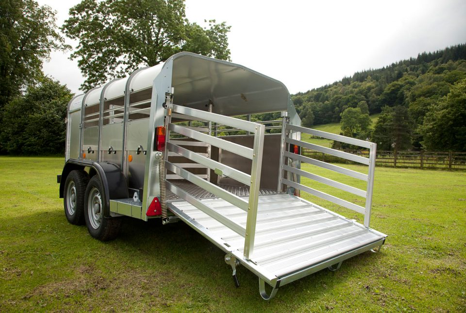 TA5 8 4ft H Ifor Williams Livestock, Westwood New Trailers