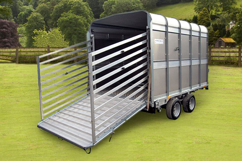 TA5 8 Ifor Williams Livestock, Westwood New Trailers, Low Headroom