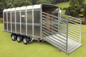 DP120 14 Ifor Williams Livestock, Westwood New Trailers