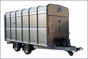 DP120G 12 TRI Ifor Williams Livestock, Westwood New Trailers