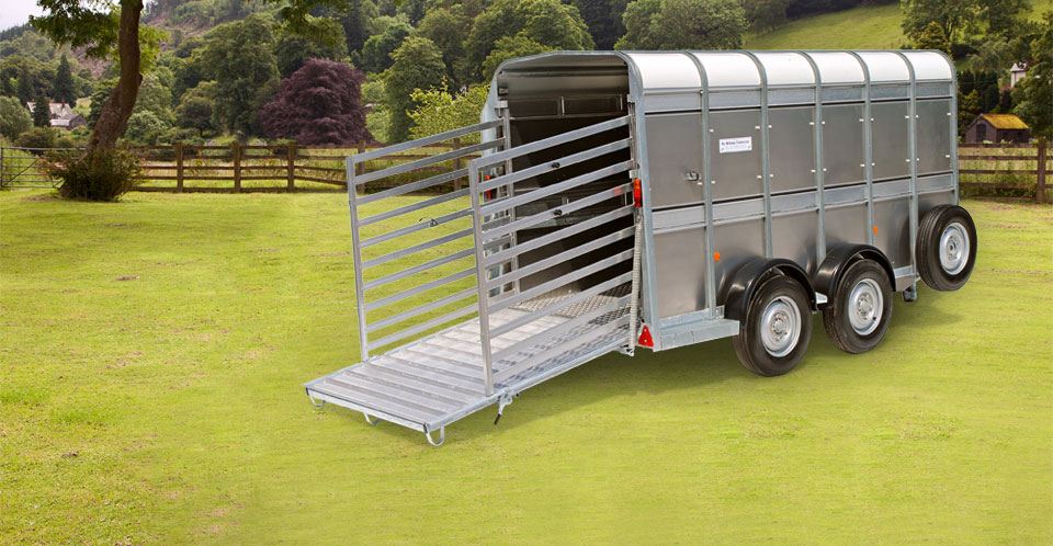 TA512 Ifor Williams Livestock, Westwood New trailers