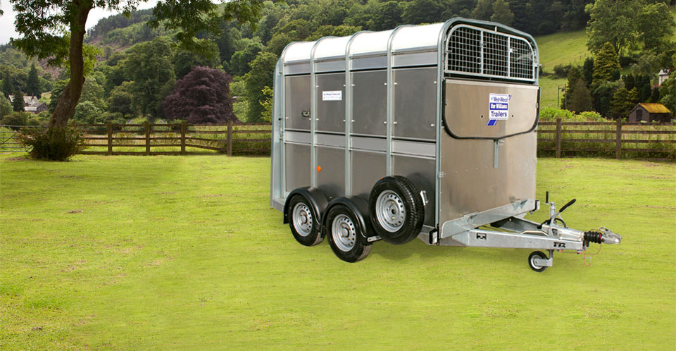 TA58 Ifor Williams Livestock, Westwood New trailers