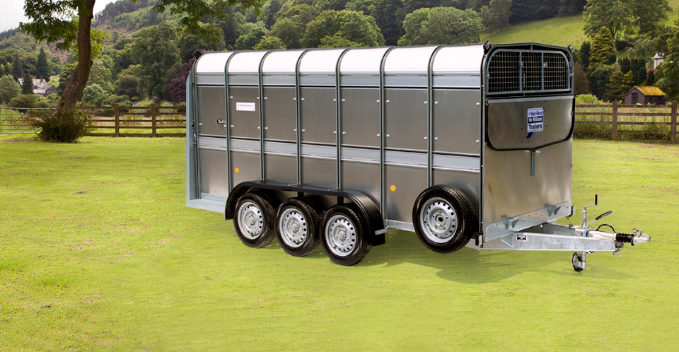 TA510 14 Ifor Williams Livestock, Westwood New Trailers