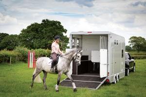 Eventa Field Horse SJ