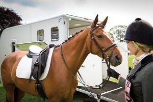 Headshot Horse and Rider